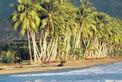 Viajes a Costa Rica | Playa Uvita